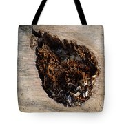 Canal Stumps-018 Tote Bag