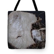 Canal Stumps-026 Tote Bag