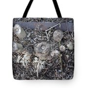 Canal Stumps-027 Scabs Tote Bag