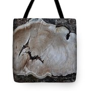 Canal Stumps-058 Tote Bag