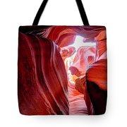 Canyon X Tote Bag