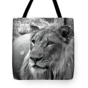 Captive Tote Bag