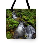 Cascades Of Lee Falls Tote Bag