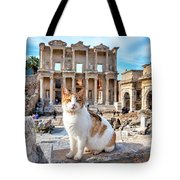 Cat In Front Of The Library Of Celsus Tote Bag
