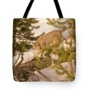 Cat Walk Tote Bag