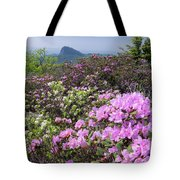Catawba Rhododendron Table Rock  Tote Bag