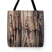 Cathedral Chimera Tote Bag
