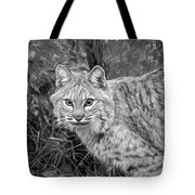 Cattitude By Tl Wilson Photography Tote Bag by Teresa Wilson