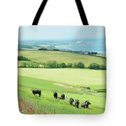 cattle in field and east coast Berwickshire Tote Bag