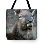 Caught With A Mouthful Tote Bag