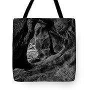 Cavern Of Lost Souls Tote Bag