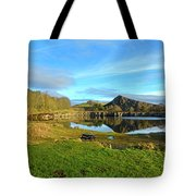 Cawfield Quarry And Hadrians Wall In Northumberland Tote Bag
