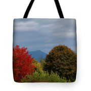 Charlotte Vermont View Of Camels Hump Tote Bag