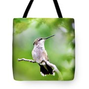 Charming Hummingbird Square Tote Bag
