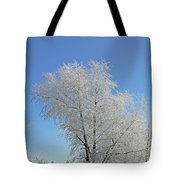 Cherohala Magic Tote Bag