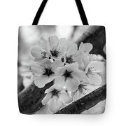 Cherry Blossoms 2019 E Tote Bag