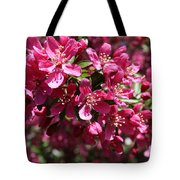 Cherry Blossoms 2019 IIi Tote Bag