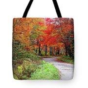 Chikanishing Road In Fall Tote Bag