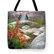 Chikanishing Trail Boardwalk Tote Bag