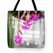Christmas Cactus In Razzle Dazzle Pink Tote Bag