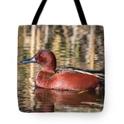 Cinnamon Teal On The Pond Tote Bag
