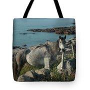 Cleggan Connemara Tote Bag