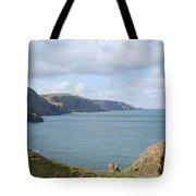 cliffs and coast at St. Abbs Head, Berwickshire Tote Bag