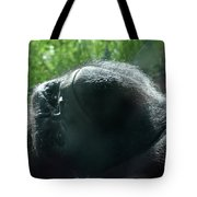 Close-up Of Frowning Adult Mountain Gorilla Tote Bag