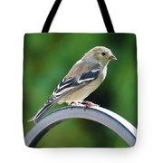 Closeup Of Goldfinch Tote Bag