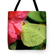 Cloudless Sulphur Tote Bag