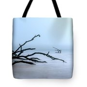 Coastal Drift Wood Tote Bag by Tom Singleton