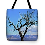 Colorado National Monument Colorado Blue Sky Red Rocks Clouds Trees 2 10212018 2842.jpg Tote Bag