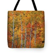 Colorful Glow Of Autumn Tote Bag by Leland D Howard