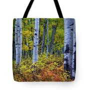 Colors Of October Tote Bag by John De Bord