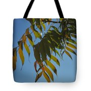 Colors Of The Neighborhood 24 Tote Bag