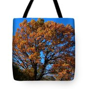 Colours At The Front Tote Bag