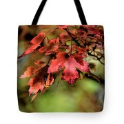 Colours Turning Tote Bag