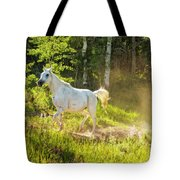 Coming Through The Dust Tote Bag