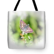 Common Checkered Skipper Butterfly  Tote Bag