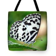 Common Pierrot Butterfly Tote Bag