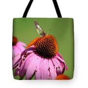 Cone Flower Butterfly At Rest Tote Bag