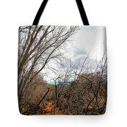 Cottonwood Arizona Jail Trail Trees Path Sky Clouds 5229 Tote Bag