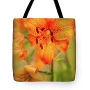Could These Be Tiger Babies? Tote Bag