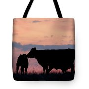 Cow And Calves After Sunset 01 Tote Bag by Rob Graham