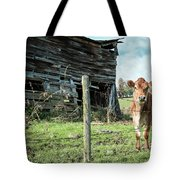 Cow By The Old Barn, Earlville Ny Tote Bag by Gary Heller