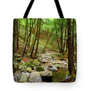 Creek In Massachusetts 2 Tote Bag