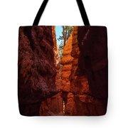 Crimson Crevice Tote Bag