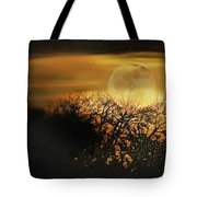Crows Nest Full Moon Tote Bag