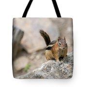 Curious Chipmunk Tote Bag