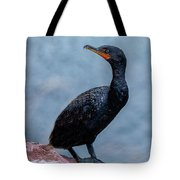 Curious Cormorant Tote Bag